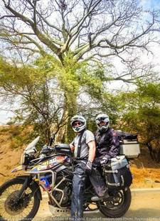 Ceibo Tree Tiger Triumph 800XCx Ecuador Motorcycle Rental