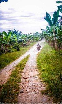riding through banana plants ecuador motorcycle adventure