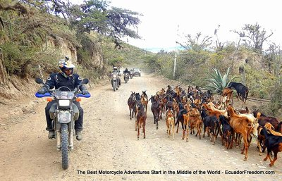 Riding in dry desert to alaburo on dirt bike tour ecuador deluxe
