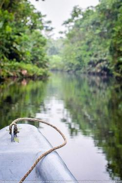 canoe in the amazon basin