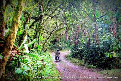 motorcycle riding in the ecuador cloudforest