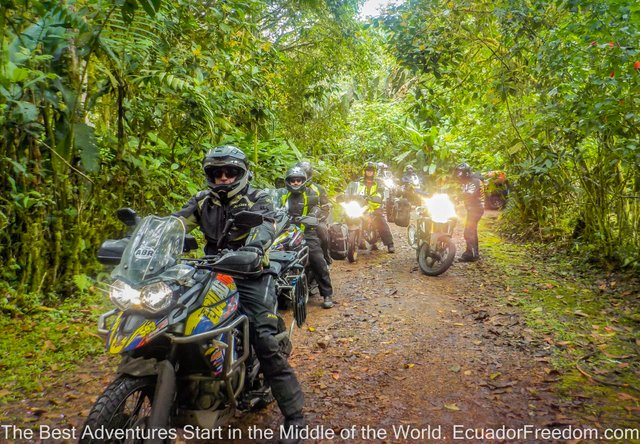 Motorcycle tour in Ecuador cloudforest