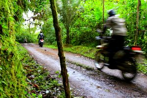 cloudforest on western slopes of ecuador for dirt bike motorcycle adventure tour