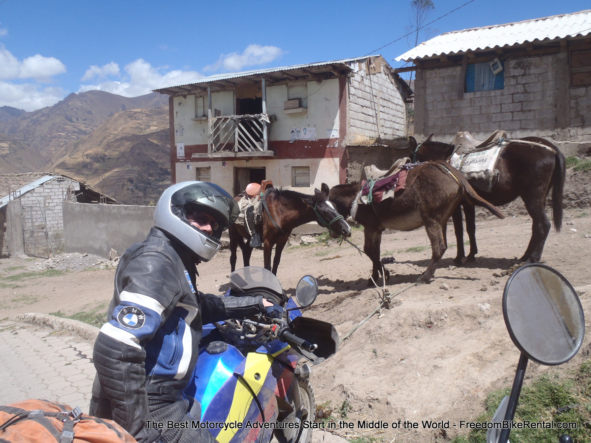 horses_in_angamarca
