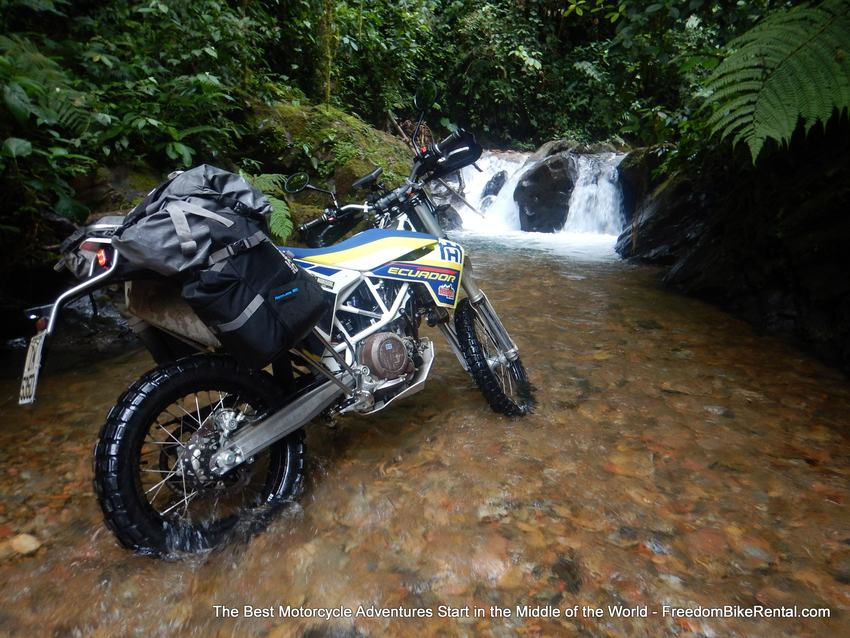 Husky_in_the_waterfall_in_Mashpi
