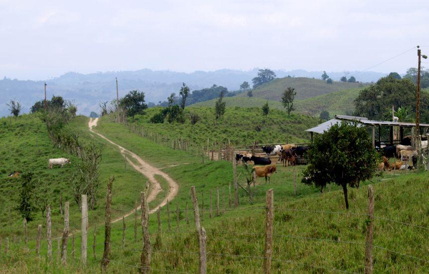 camino-a-rio-mariano2-1000