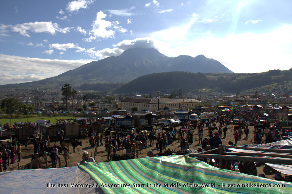 otavalo_animal_market